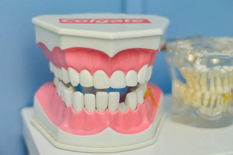 Usługi stomatologa o różnym przeznaczeniu